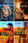 eBook: GAY Bücher